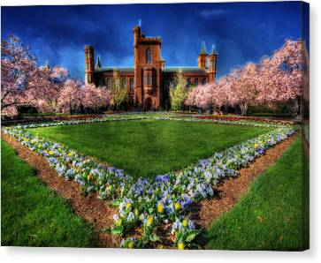 Spring Blooms In The Smithsonian Castle Garden Canvas Print by Shelley Neff
