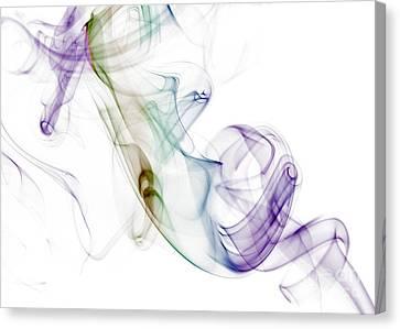 Smoke Seahorse Canvas Print