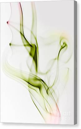 Smoke Wings Canvas Print