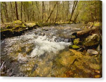 Smokey Mt. Stream Canvas Print by Paul Bartoszek