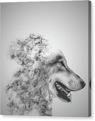 Wolves Canvas Print - Smokey Wolf by Martin Newman