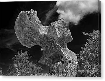 Smoking Rock Canvas Print by Ray Evans