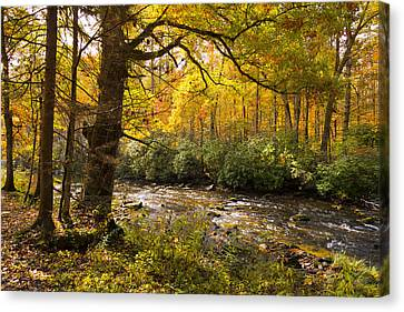 Smoky Autumn Canvas Print by Debra and Dave Vanderlaan