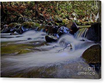 Canvas Print featuring the photograph Smoky Mountain Stream by Douglas Stucky