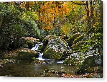 Smoky Mountain Waterfall Canvas Print by Rich Franco