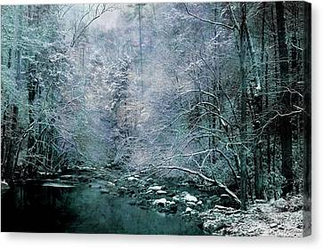 Smoky Mountain Winter Canvas Print by Mike Eingle