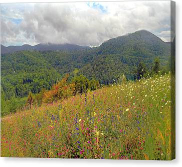 Canvas Print featuring the photograph Smoky Mountains by Raymond Earley