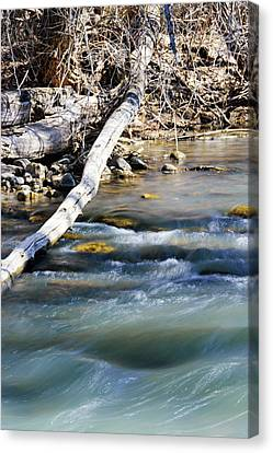 Smooth Water Canvas Print