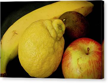 Smoothie Collection With Apple Note. Canvas Print by Elena Perelman