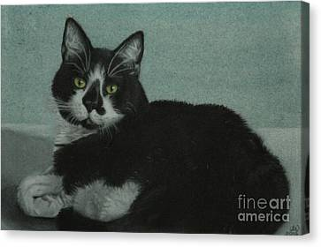 Smudge Canvas Print by Jennifer Watson