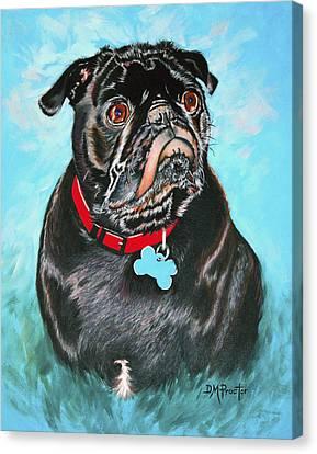 Smug Black Pug Canvas Print