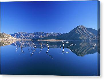 155 Canvas Print - Snags- Lake Isabella by Soli Deo Gloria Wilderness And Wildlife Photography