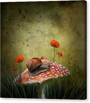 Surrealism Canvas Print - Snail Pace by Ian Barber