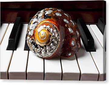 Snail Shell On Keys Canvas Print by Garry Gay