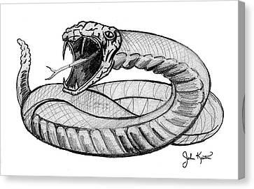 Snake Canvas Print by John Keaton