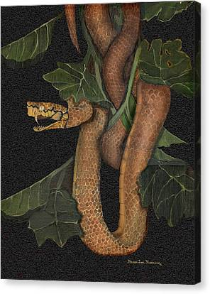 Snake Of No Kind Canvas Print by Karen-Lee