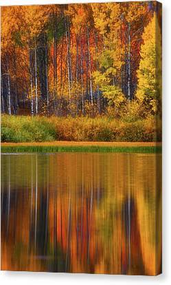 Canvas Print featuring the photograph Snake River Fall Colors by Darren White