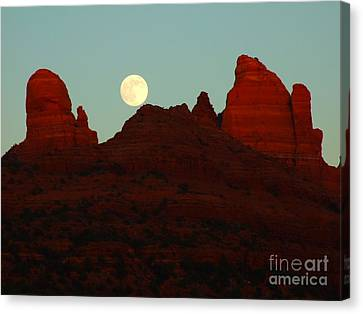 Snoopy's Moon Canvas Print by David Grower