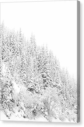 Snoqualmie Pass Canvas Print by Ann Johndro-Collins