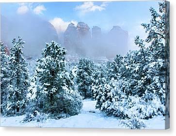 Snow 07-072 Canvas Print by Scott McAllister