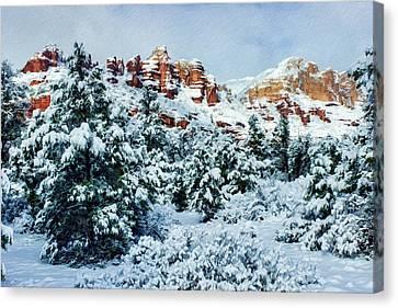 Snow 09-007 Canvas Print by Scott McAllister