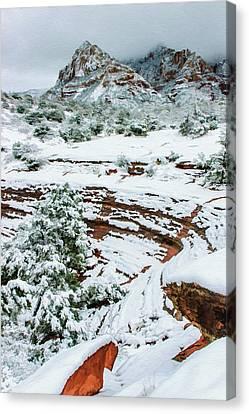 Snow 09-037 Canvas Print by Scott McAllister
