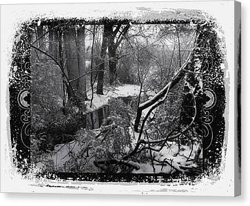 Canvas Print featuring the photograph Snow 2018 by Robert G Kernodle