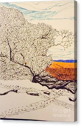 Snow Above The Desert  Canvas Print by Ishy Christine Degyansky