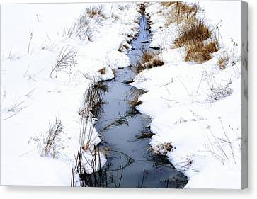 Snow And Creek Welch Glade Canvas Print
