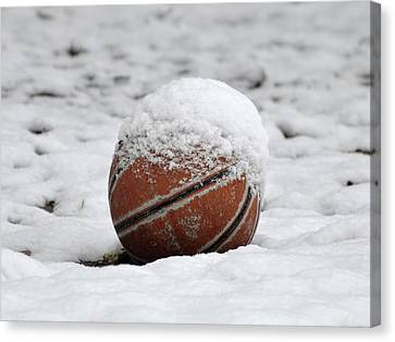 Snow Ball Canvas Print by Al Powell Photography USA