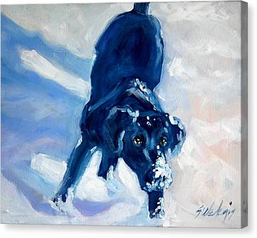 Snow Boy Canvas Print