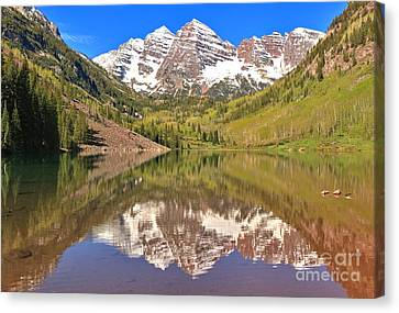 Snow Capped Reflections Canvas Print by Adam Jewell