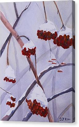 Snow Caps Canvas Print by Debbie Homewood