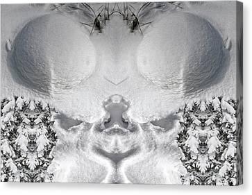 Snow Cheeks Canvas Print