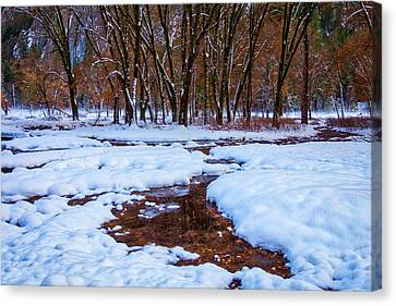 Snow Covered Field And Trees Canvas Print
