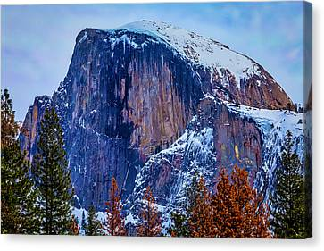 Snow Covered Half Dome Canvas Print by Garry Gay