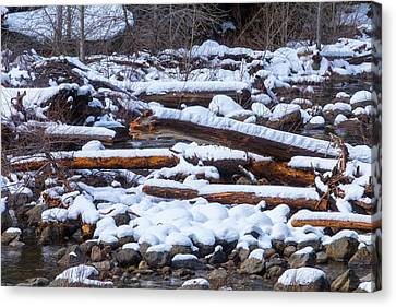 Snow Covered Logs Canvas Print