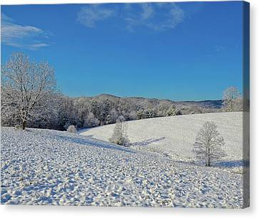 Snow Covered Pasture Canvas Print by Susan Leggett