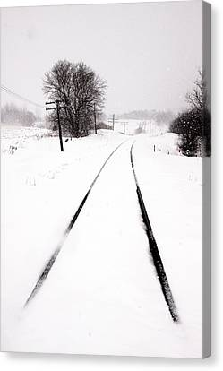 Snow Crossing Canvas Print by Russell Styles