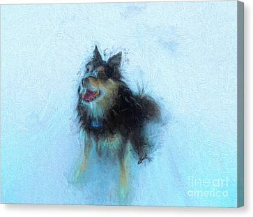 Snow Dog  Canvas Print by Claire Bull