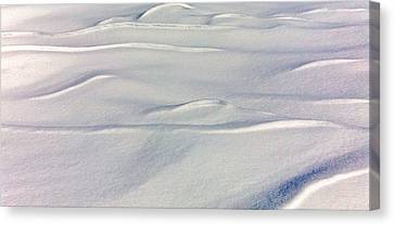 Snow Drift Canvas Print by William Wetmore