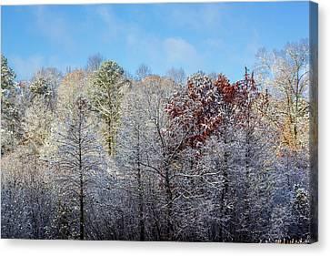 Snow Dust Canvas Print