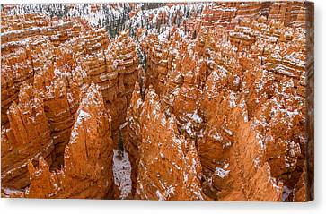 Snow Dusted Hoodoos Of Bryce Canyon Canvas Print