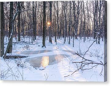 Snow Escape Canvas Print by Priyanka Ravi