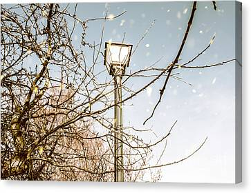 Snow Fall And Old Lights Canvas Print by Jorgo Photography - Wall Art Gallery
