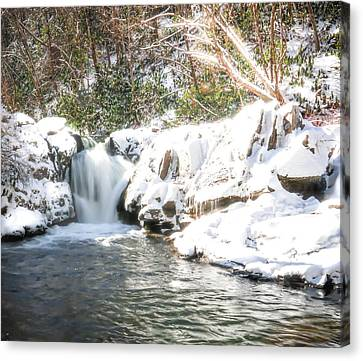 Snow Fall Waterfall Canvas Print by Lisa Bell