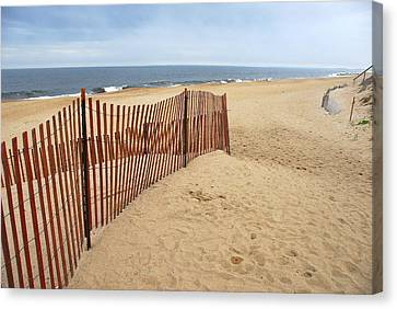 Snow Fence - Plum Island Canvas Print