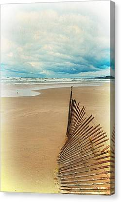 Snow Fence And Seagulls Canvas Print by Michelle Calkins