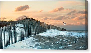 Canvas Print featuring the photograph Snow Fence by Robin-Lee Vieira