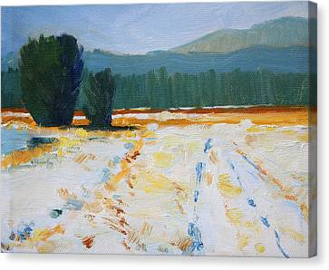Canvas Print featuring the painting Snow Field by Nancy Merkle